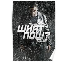 KEVIN HART WHAT NOW RBB03 Poster