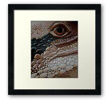Eastern Water Dragon Framed Print
