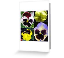 Cute Pansy Faces Collage Greeting Card
