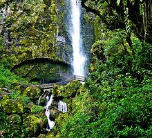 El Chorro Waterfalls of Giron II by Al Bourassa