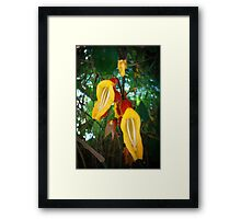 Bell Flowers Framed Print