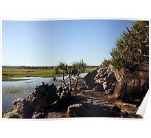 A creekside scene in Arnhem Land Poster