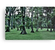 Dark Cypress Metal Print