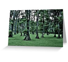 Dark Cypress Greeting Card