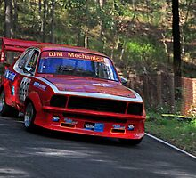 Racing Torana  by Noel Elliot