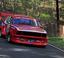 Racing Torana  by Noel Elliot
