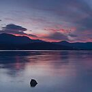 Heart of Tasmania by Anton Gorlin