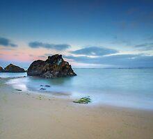 Bay Bridge Beach by Toby Harriman