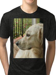 Brown-Eyed Girl Tri-blend T-Shirt