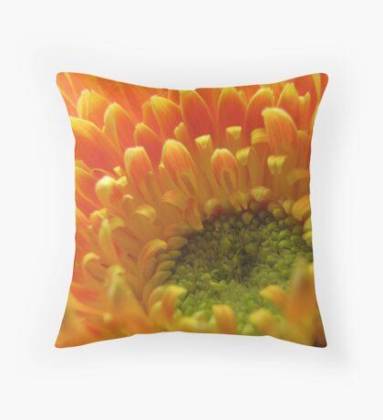 Orange Gerbera Throw Pillow