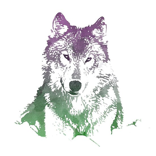 Watercolour Wolf by Limited Apparel