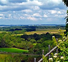 Looking Across Purbeck by Mike Streeter