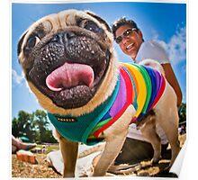 Pug - Brighton Pride Dog Show Poster