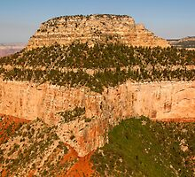Grand Canyon National Park, America by Deb22