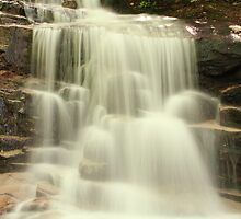 Falling Waters by Roupen  Baker