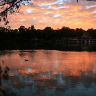 Shepherd's Warning, Paringa,S.A. by elphonline