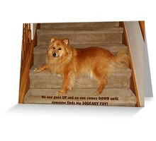 "Stair Guardian: ""No One Goes Up or Down"" Greeting Card"