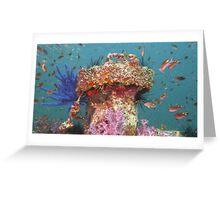 Air Vent - Wreck of the King Cruiser Greeting Card
