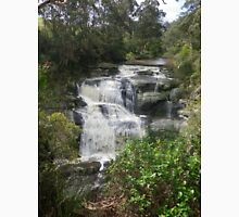 Beautiful Agnes Falls, South Gippsland (Australia) T-Shirt