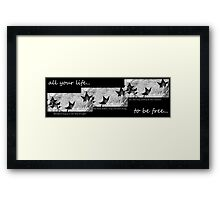 Blackbird Fly... Framed Print