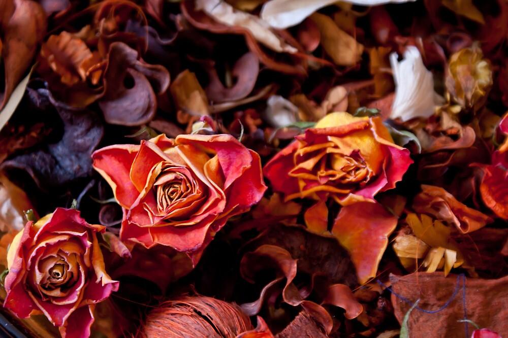 Rustic Flowers by Lennox George