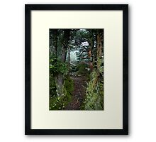 Peeking into Nature Framed Print