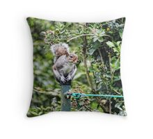 Smart Squirrel On The Washing Line  Throw Pillow