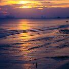 Evening Glow by Jonicool