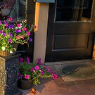Morning Flowers by © Joe  Beasley IPA