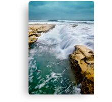 Overrun with Water Canvas Print