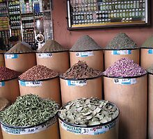 Spices in the souk by TedT