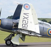 Hawker Sea Fury  by Nigel Bangert