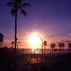 California Beach Sunset - Palm Tree Silhouette by crhodesdesign