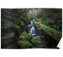 Upper Strickland Falls - Hobart Poster