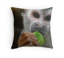 Capuchin Monkey Throw Pillow