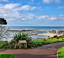 A View From The Gardens ~ Lyme Regis by Susie Peek
