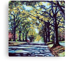 'Morehead Street' Canvas Print