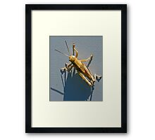 Spidy is my Cousin Framed Print