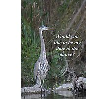 Would you like to be my date for the dance. Photographic Print