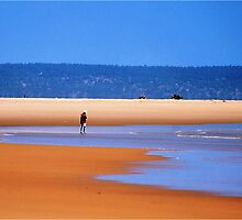 HEAVEN ON EARTH - Mozambique by Magriet Meintjes