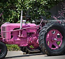 He Thinks My Tractor is Sexy by Sherry Hallemeier