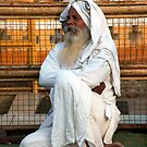 Alwar Holy Man by phil decocco
