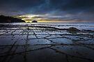 Tessellated Pavement at Sunrise by Jim Lovell