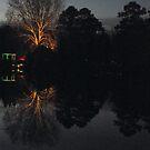 Lewis Ginter Botanical Garden at sunset by AJ Belongia