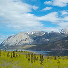 Mountains along the Yukon Trail, BC, Canada. 2012. by johnrf