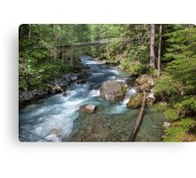 Troublesome Creek Canvas Print