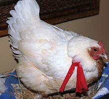 Farm talk - Kiep and her red bandana by Maree  Clarkson