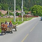 On the road in Transylvania by Graeme  Hyde