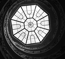 Spiral stairs in the vatican.  by Naomi  Dowdeswell
