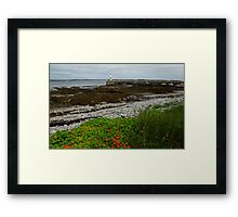 Rainbow Beach Framed Print